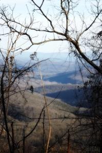 Arkansas 368