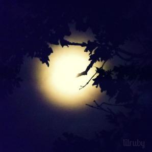 Moon 112