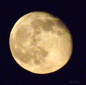 Moon 141